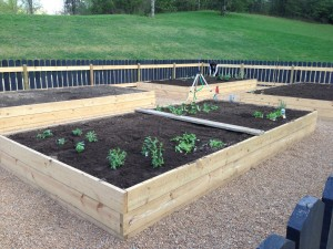The new raised beds at Hannah Ford Farm are ready for planting.