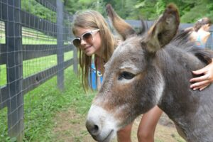 A girl with sunglasses hugs a donkey's neck.